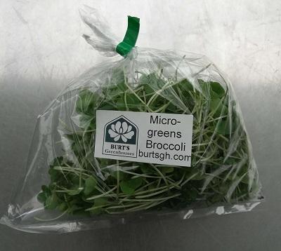 fresh greens at Sigrids Natural Foods in Kingston