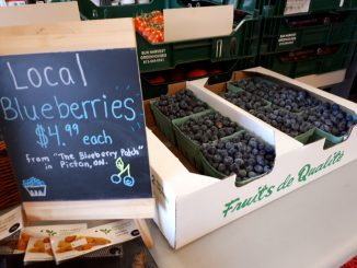 fresh berries at Sigrids in Kingston
